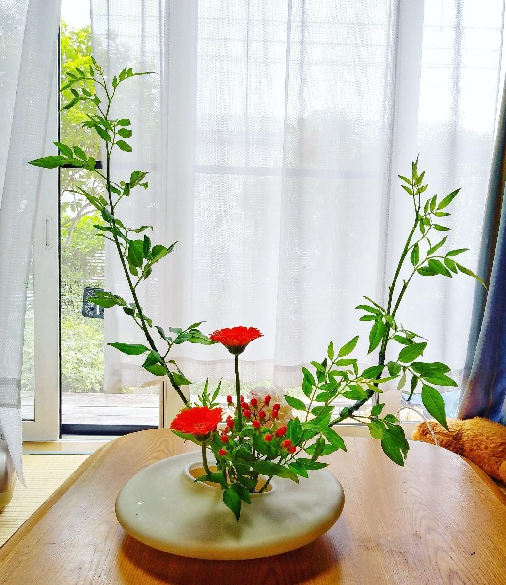 花の力_e0239118_23480253.jpg