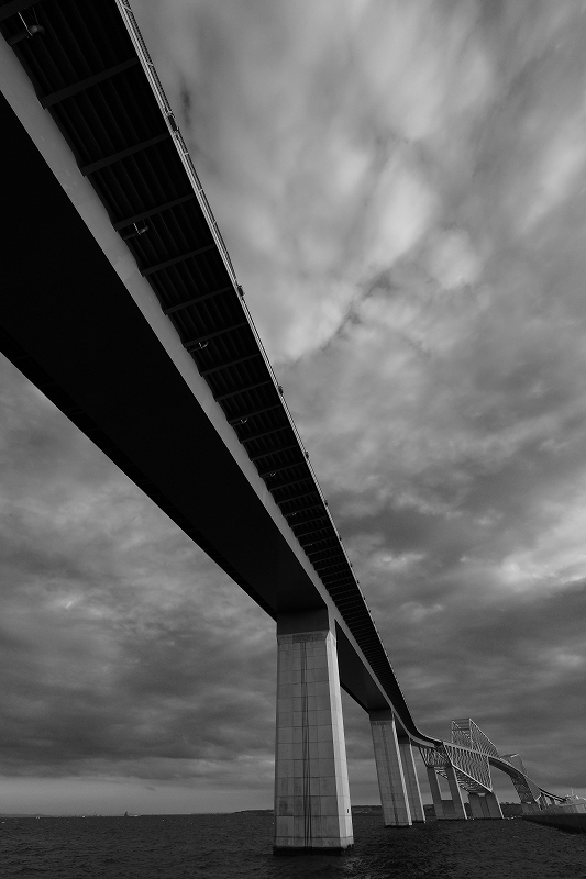 Tokyo Bay Brige by FUJINON8-16mm_f0050534_08120595.jpg