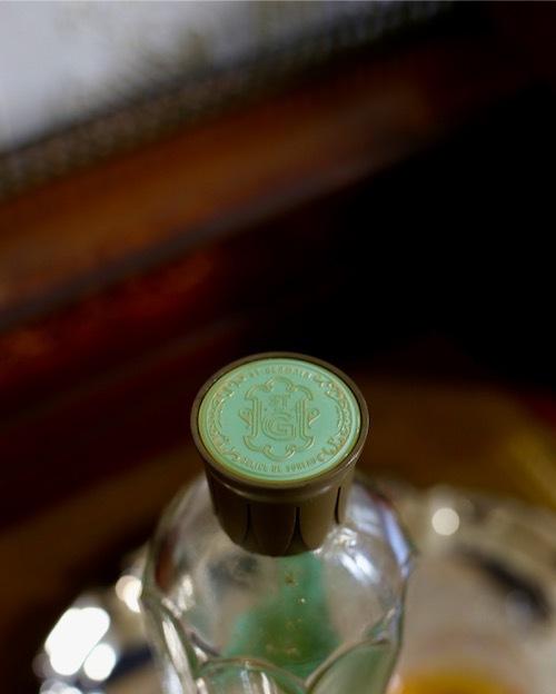 初夏を知らせる飲み物 エルダーフラワーコーディアル_f0380234_19480052.jpeg