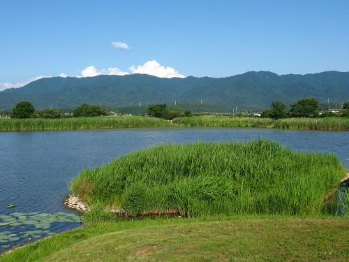 瓢湖あやめまつり2020_f0182936_12314292.jpg