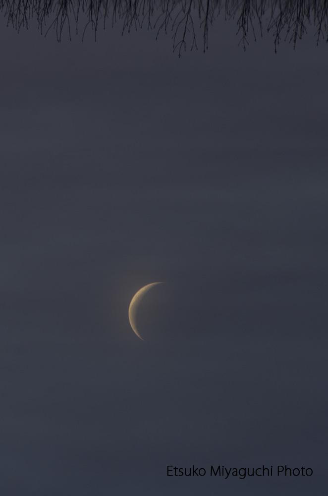 さかさまの月_f0152939_13090462.jpg