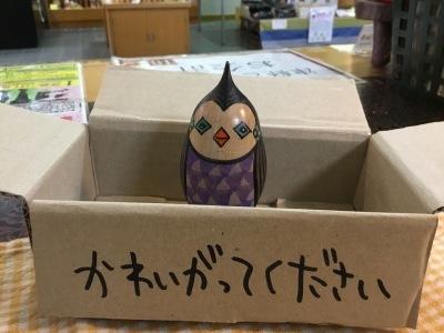 6月22日 あいぼうがほしい_e0318040_17453593.jpg