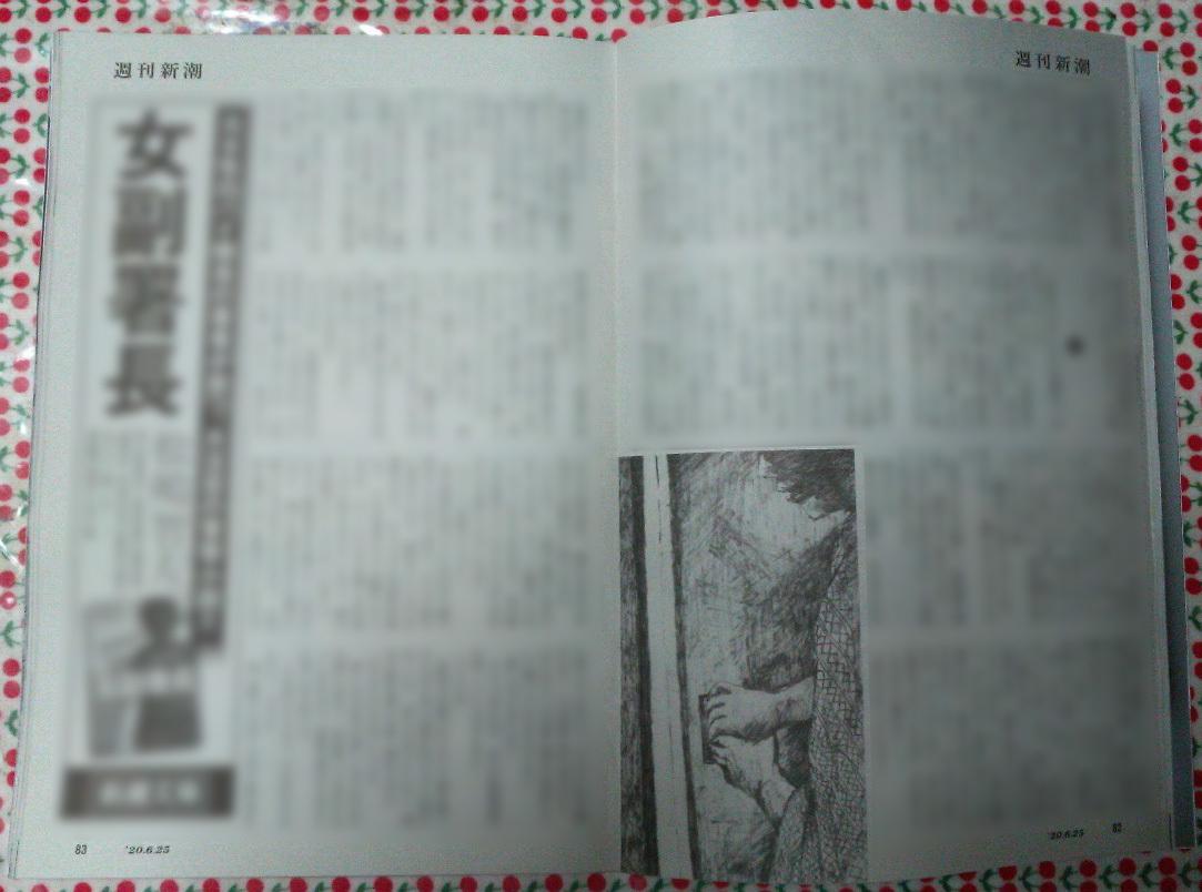 週刊新潮「雷神」挿絵 第23回〜24回_b0136144_01320212.jpg