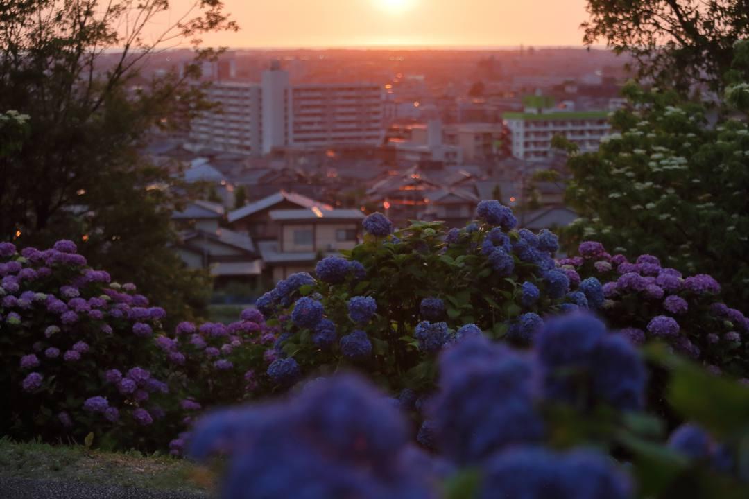 夏至の夕陽_e0403850_10250022.jpg