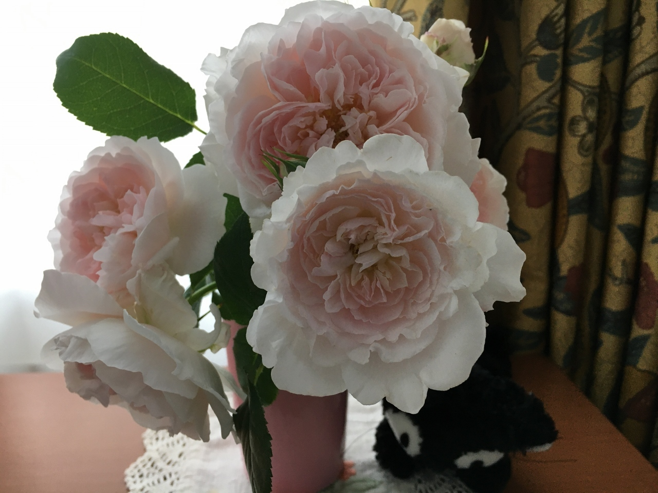 バラ、ばら、薔薇の季節ですよ~ん♪_e0326953_13315987.jpg
