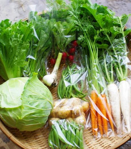 今週の野菜セット(6/23~6/27着)_c0110869_13142062.jpg