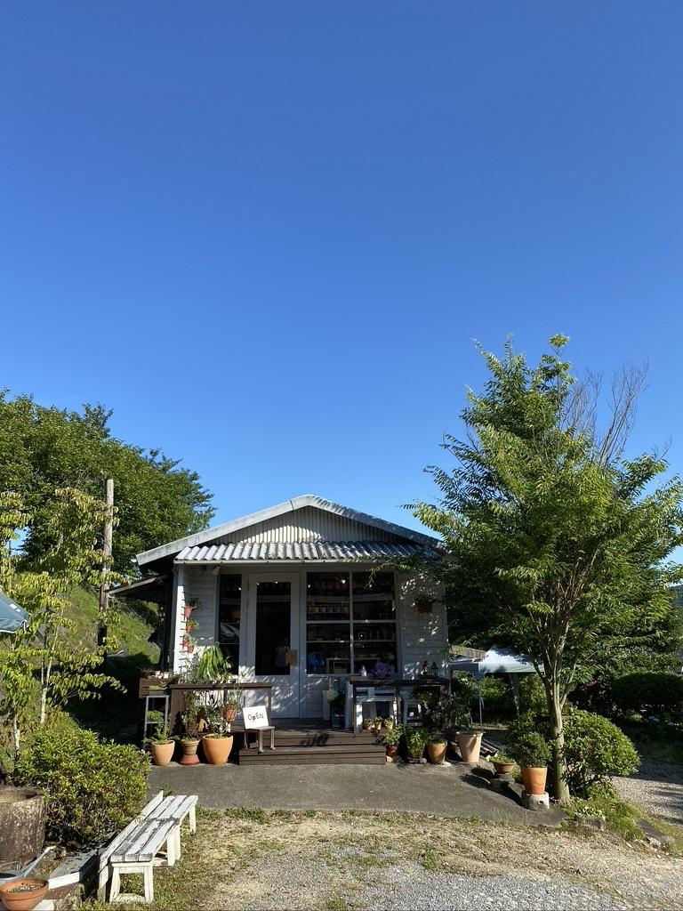 梅雨の中休み 〜紫陽花とともに〜_c0334574_19390990.jpeg