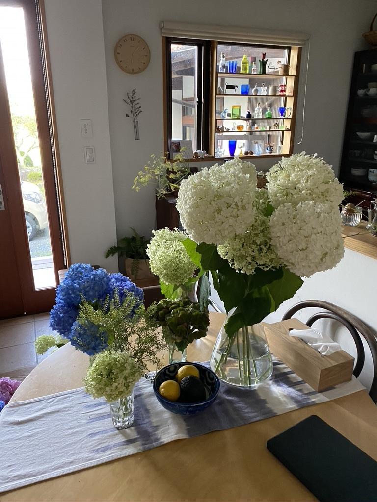 梅雨の中休み 〜紫陽花とともに〜_c0334574_19430453.jpeg