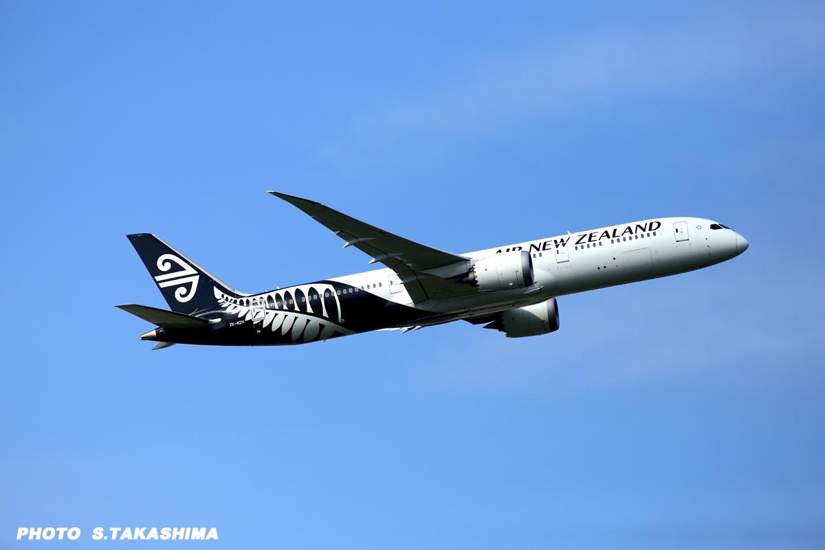 ニュージーランド_b0368378_20113569.jpg