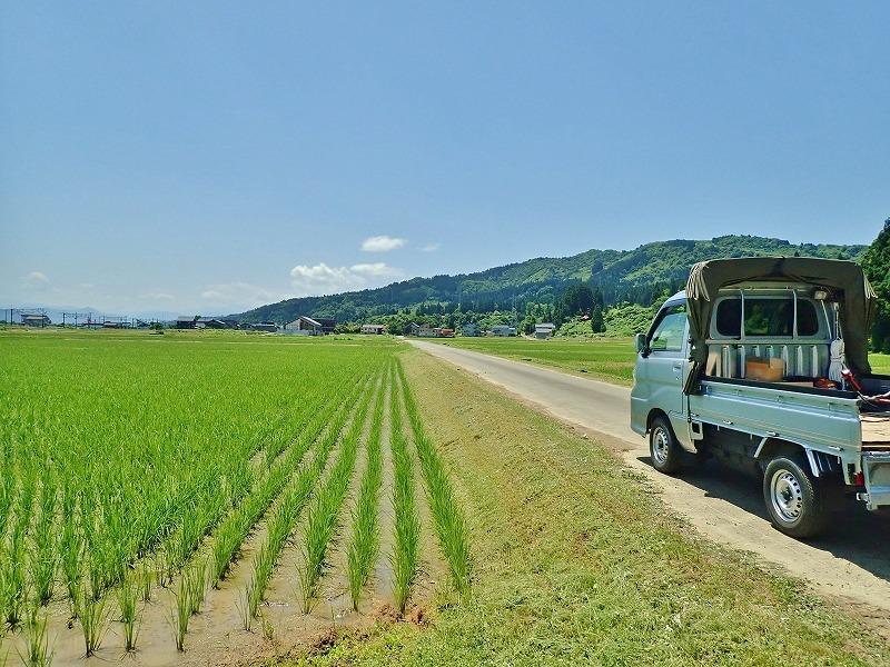 兼業農家は2回目の草刈り作業を行いました_c0336902_20042735.jpg