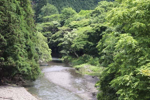 夏の鴨川上流 柊野ダムなど_e0048413_20350917.jpg