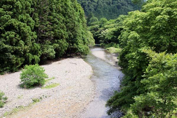 夏の鴨川上流 柊野ダムなど_e0048413_20351341.jpg