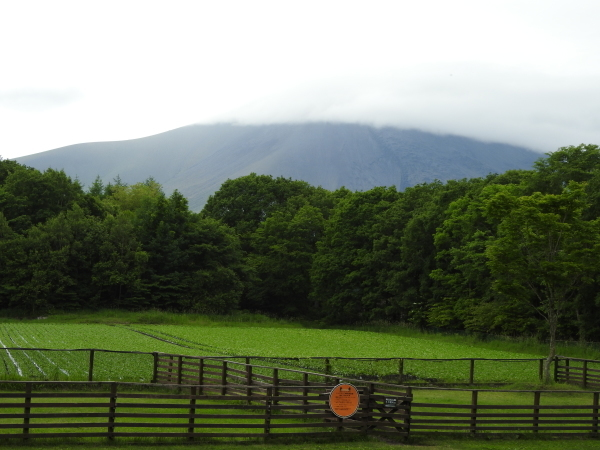 浅間山の動向(2020年6月24日)_b0174425_15270226.jpg