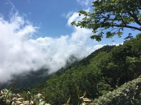6月23日(火)晴れ 朝の気温12℃_c0089831_08272821.jpeg