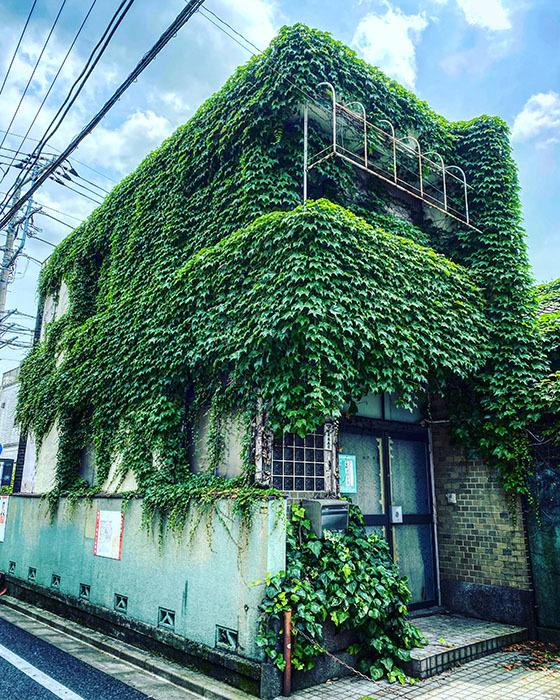 世田谷区経堂 / iPhone 11_c0334533_16564726.jpg