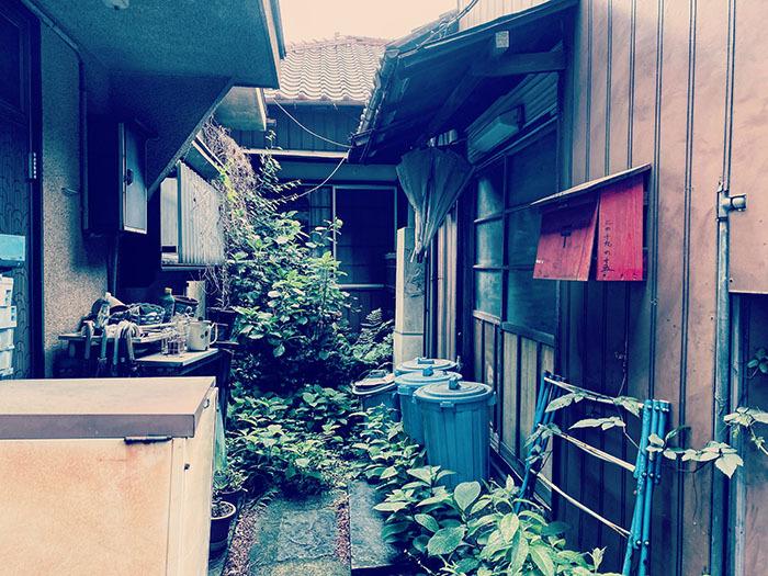 世田谷区豪徳寺 / iPhone 11_c0334533_17040739.jpg