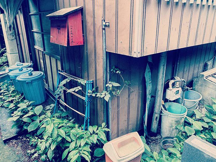 世田谷区豪徳寺 / iPhone 11_c0334533_17041531.jpg