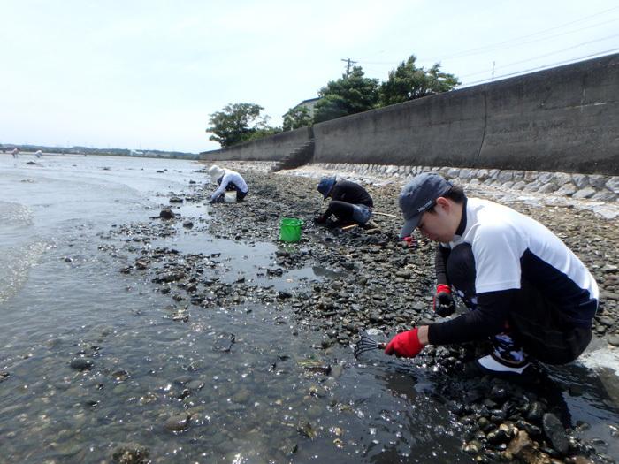 貝掘りはムキになる_c0120834_16064780.jpg