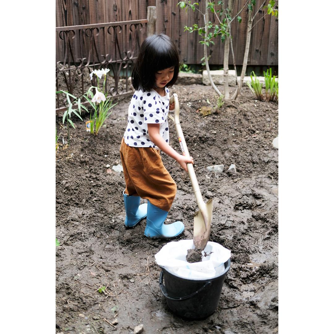 わが家の庭づくり。3日目のようす。_d0227246_10194013.jpg