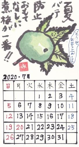 青葉 2020年7月 「煮梅」_b0124466_21440677.jpg