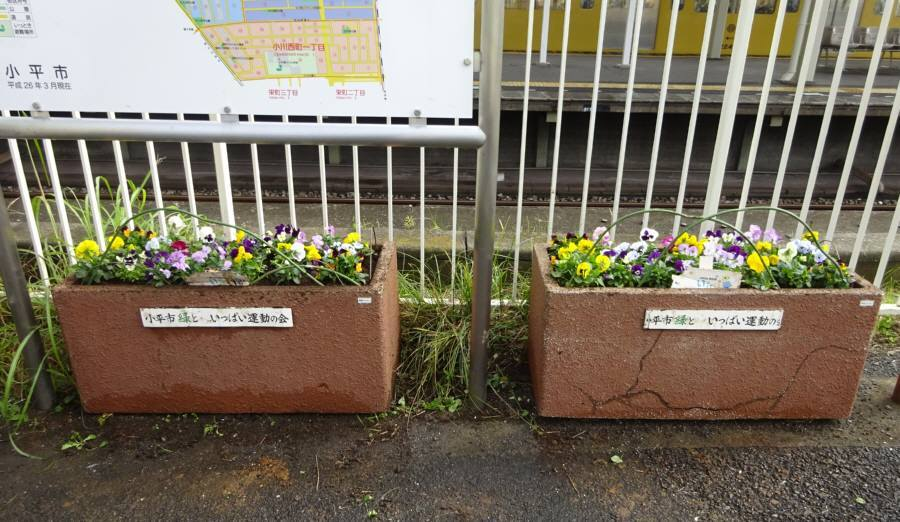 小川駅西口プランター 枯れ花の撤去_f0059673_00071430.jpg