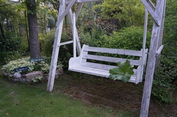 こんにゃくをお庭に_e0365880_22353940.jpg