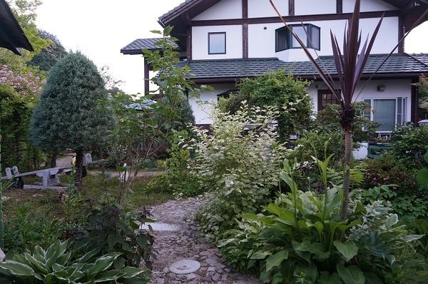 こんにゃくをお庭に_e0365880_22385818.jpg