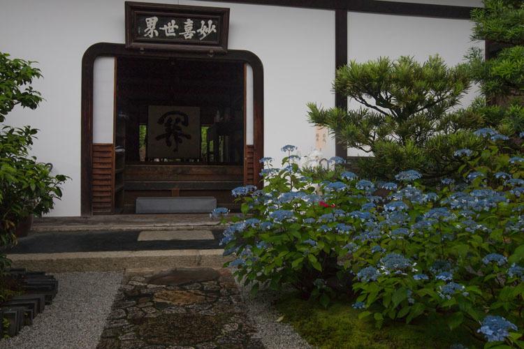 霊源院(建仁寺塔頭)_e0051888_05024553.jpg