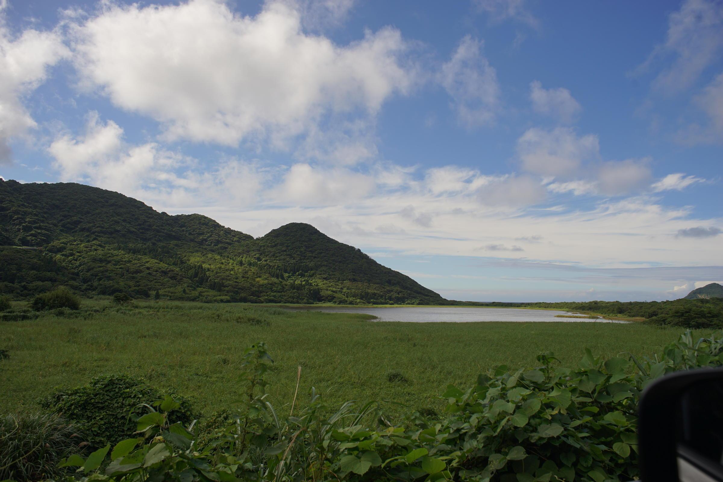 島のDistagon 25mm_b0060239_18500252.jpg