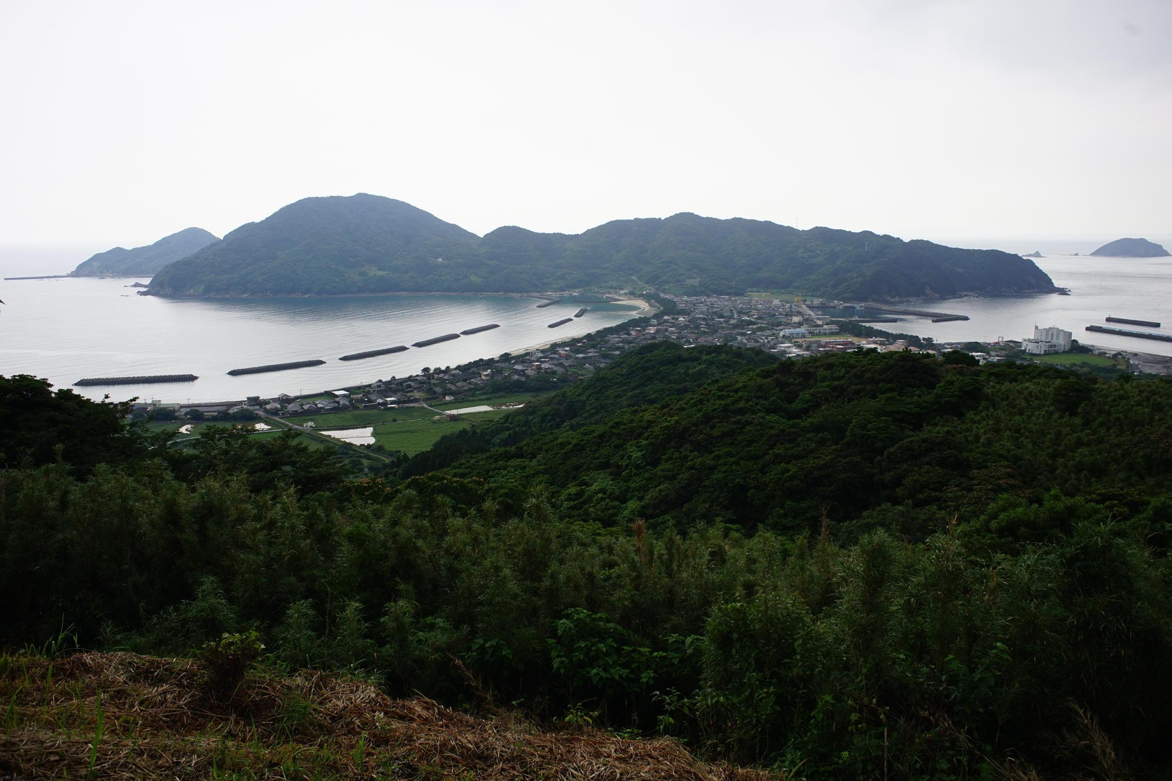 島のDistagon 25mm_b0060239_18500317.jpg