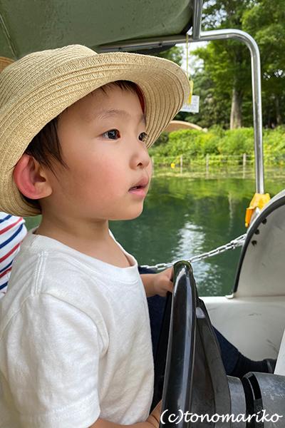 白鳥のボートと博多イベントへのおいしい妄想♪_c0024345_11311314.jpg