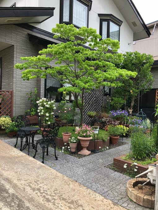 お庭拝見_b0093660_19373840.jpg
