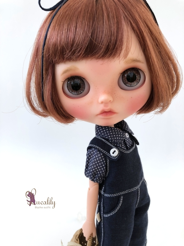 *lucalily * dolls clothes* Swallow dress *_d0217189_20370583.jpg