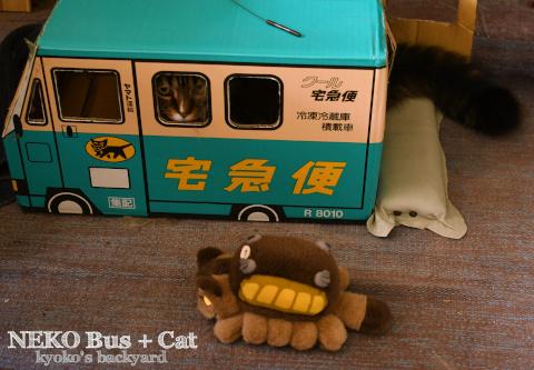 ネコバスに感化される猫?_b0253205_03511427.jpg