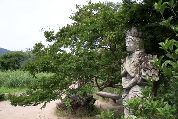 広沢の池(遍照池)嵯峨野_e0048413_21012718.jpg