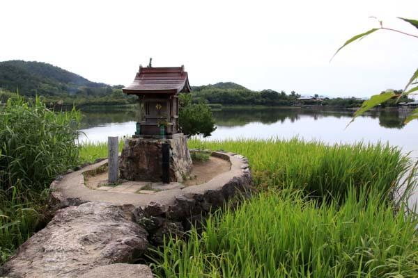 広沢の池(遍照池)嵯峨野_e0048413_21013189.jpg