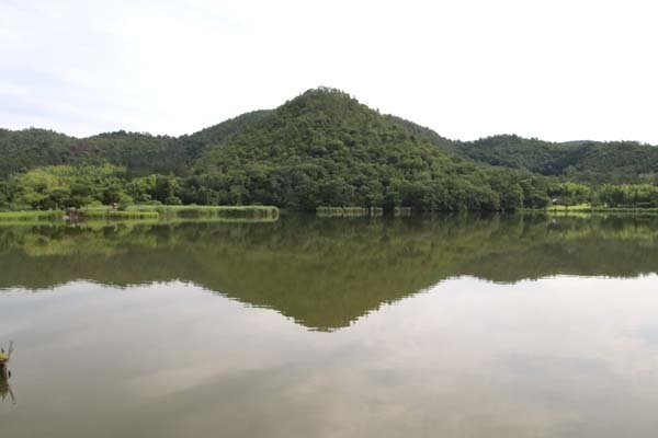 広沢の池(遍照池)嵯峨野_e0048413_21022030.jpg