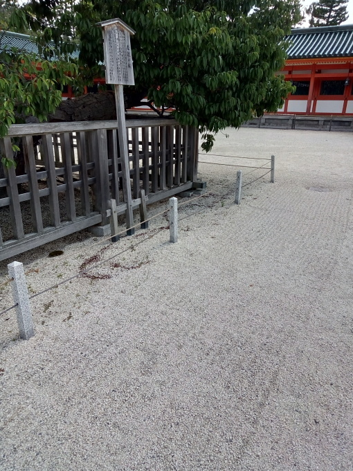 平安神宮で茅の輪くぐり。手水がコロナ対策仕様に!_e0108851_09503619.jpg