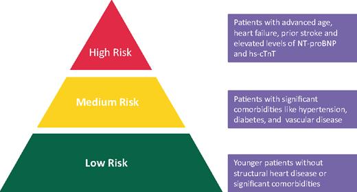 不整脈のリスク評価に関する世界4学会合同のコンセンサス文書: Europace誌_a0119856_07282724.png
