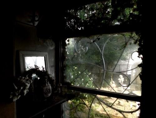小さな森へ_c0084183_10305174.jpg