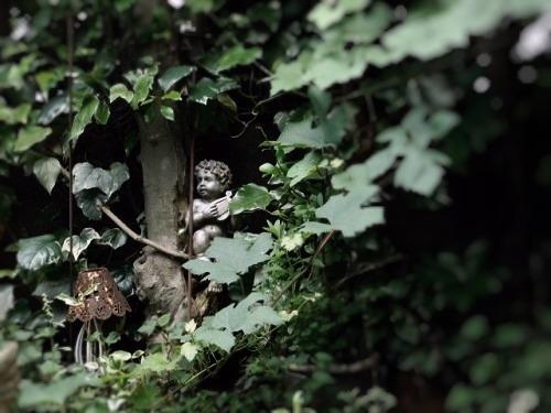 小さな森へ_c0084183_10305631.jpg