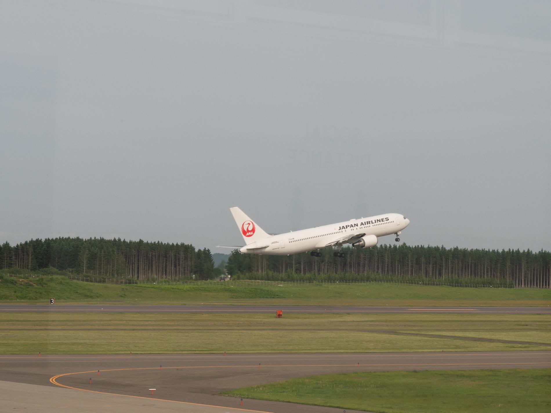 帯広空港は大幅減便中ですが・・何故か活気のあるひと時。_f0276498_12390774.jpg