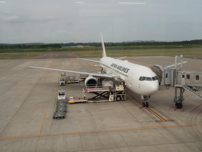 帯広空港は大幅減便中ですが・・何故か活気のあるひと時。_f0276498_12420011.jpg