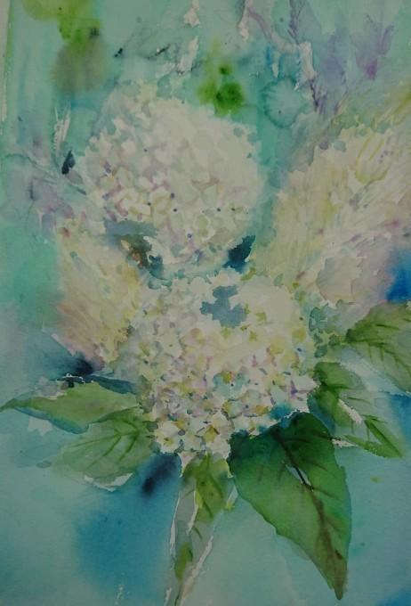 紫陽花とスモークツリーの水彩画_f0035506_12164830.jpg