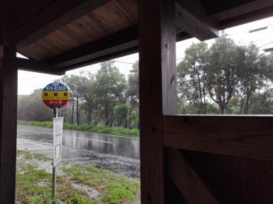 6月26日 雨宿り。_a0204408_22300574.jpg