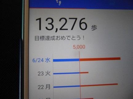 北大植物園_b0198109_21040895.jpg