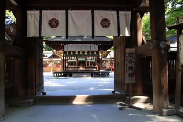 河合神社と糺の森 下賀茂神社_e0048413_21064696.jpg