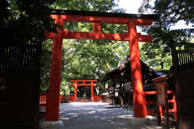 河合神社と糺の森 下賀茂神社_e0048413_21065415.jpg