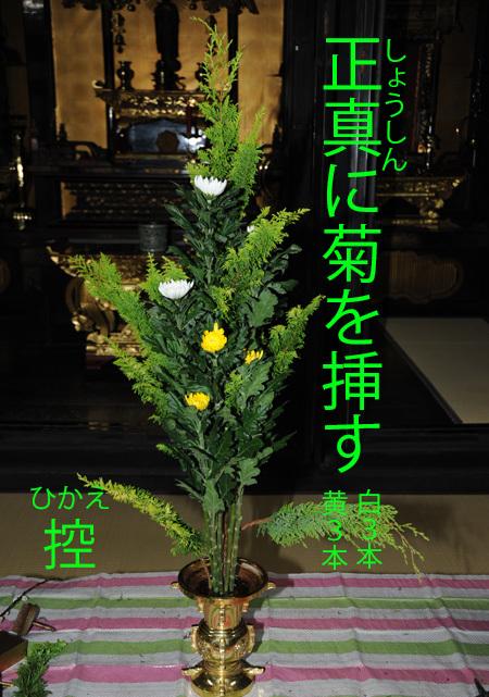 本堂の仏花_b0400632_10232971.jpg