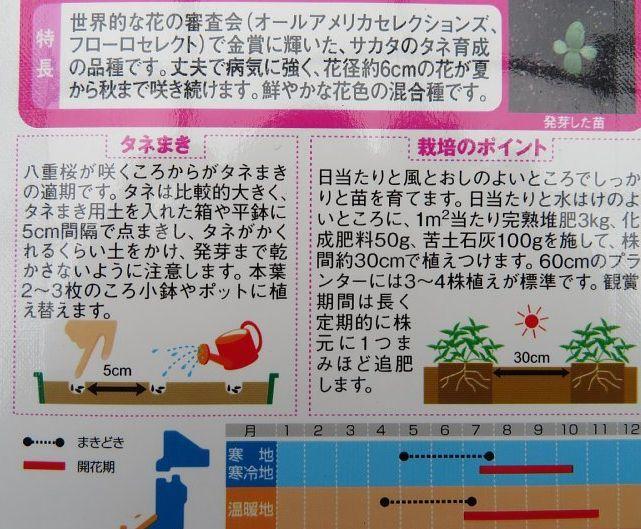 2020年7月9日 ジニア(百日草)の種まき  !(^^)!_b0341140_17340889.jpg